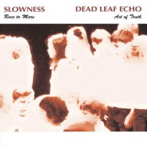Have you heard? Dead Leaf Echo