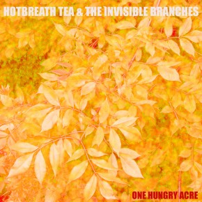 Have you heard? Hotbreath Tea & the Invisible Branches