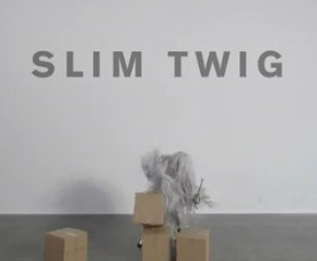 Slim Twig debuts 'Altered Ego'